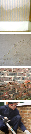 Rising Damp - Dryzone injection Cream and Dryrods DPC