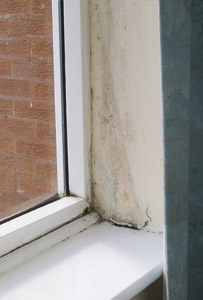 Cold bridging leading to condensation