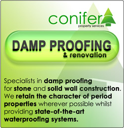 Damp Proofing, Basement Conversion, Cellar Tanking, Garden Decking Installers - Chester, Cheshire, Shrewsbury, Telford, Oswestry, Shropshire, North Wales and Mid Wales, Newtown,  Welshpool, Wrexham, Clwyd, Powys, Gwynedd, Aberystwyth and Ceredigion region